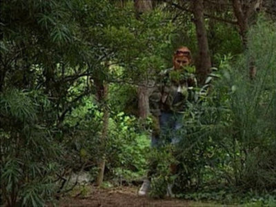 Nikolette spying on sex in the woods | italian girls  spying videos